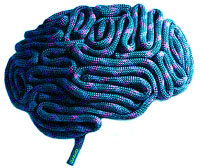 brainblue_copy.jpg