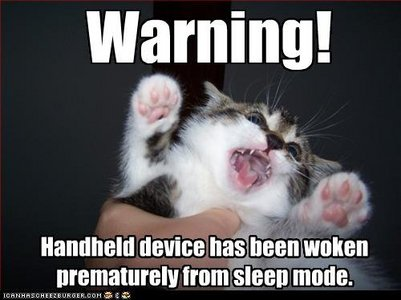 funny-pictures-cat-has-been-woken_1_.jpg