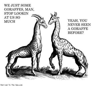 we-just-some-goraffes.gif