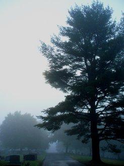 Foggy_Morning_in_Tamaqua_Cemetary.jpg