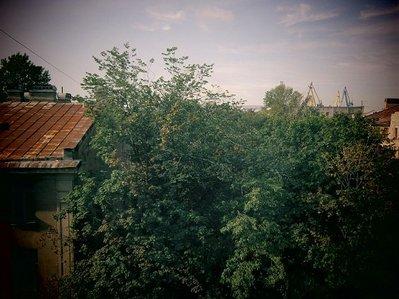 vid_iz_okna.JPG