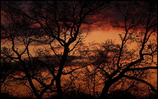 Steph_sunset_wallpaper.png