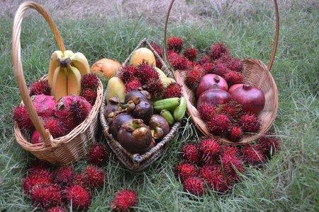 Fruit_Haeven_C_Jan_2016_09.jpg