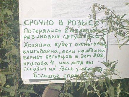 2010-07-31_16-52-03_252.jpg