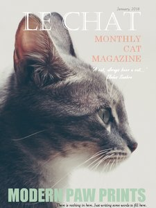 Le_Chat_Vogue.jpg