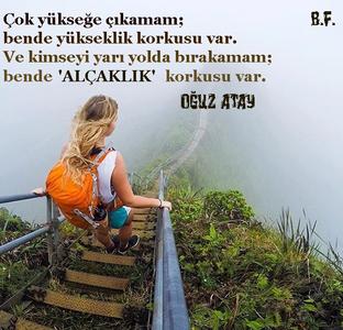 12715218_924186494343856_7309623549722412210_n.png