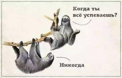 A_Nir4GQRIQ.jpg