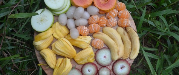 fruits_haeven_Feb_2016_121.jpg