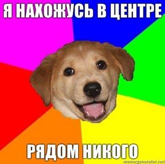 centerdog.jpg