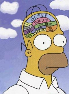 homer_brain.jpg