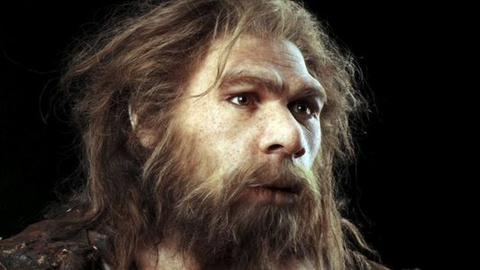 _88317142_c0263775-neanderthal_model-spl.jpg