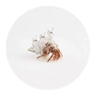 3d-printed-hermit-crab-architectural-shells-aki-inomata-6.jpg