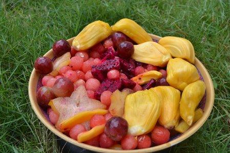 Fruit_Salad_D_Feb_2016_30.jpg