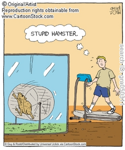 stupid_hamster.jpg.png