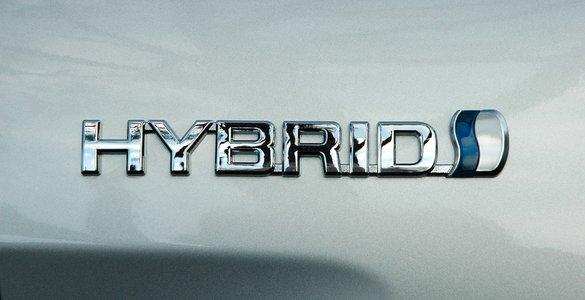 hybrid.jpg