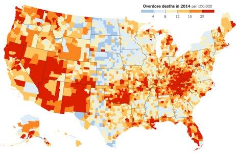 drug-map.jpg.jpg