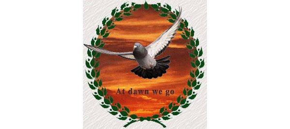 pigeon-racing-logo-homing2.jpg