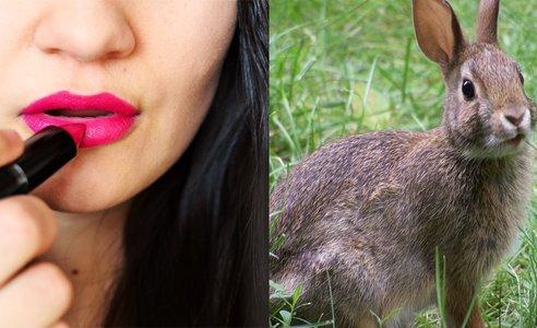 woman-rabbit.jpg.jpg