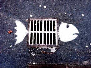 23fish.jpg