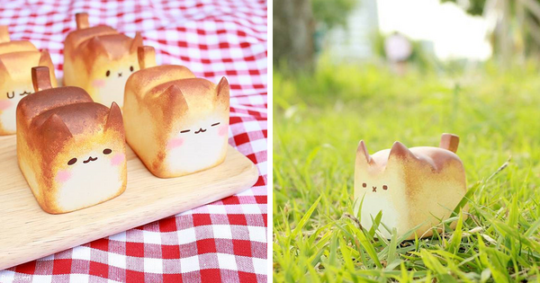 warmly-baked-the-breadcat-fb-image-main.png.png