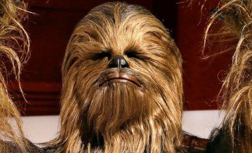 chewbacca.jpg.jpg