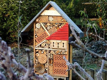 Mein Insektenhotel.jpg